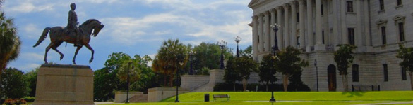 Columbia, South Carolina Chapter of ALSP -